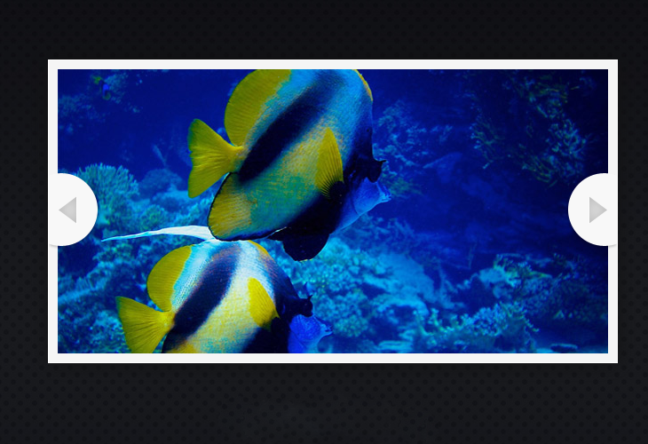 An HTML5 Slideshow w/ Canvas & jQuery