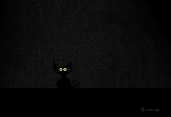 Black-Cat-in-Dark-Room