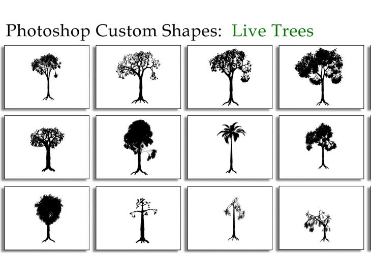 Live Trees