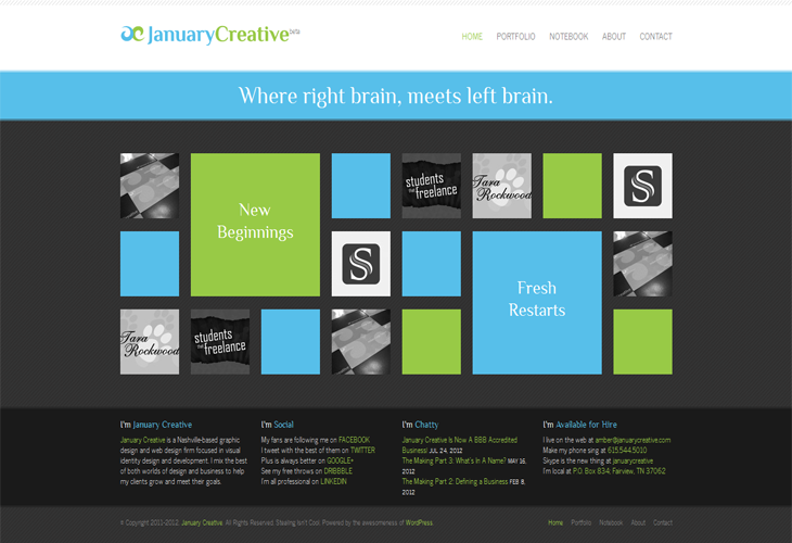 Hair Style Website: 10 Metro Style Websites Inspiration For The Web Designers