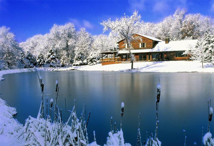Christmas-Nature