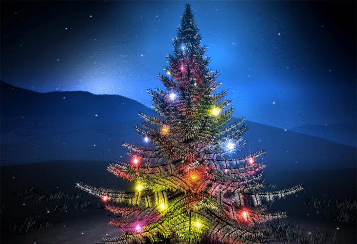 Christmas Tree - Holy Night