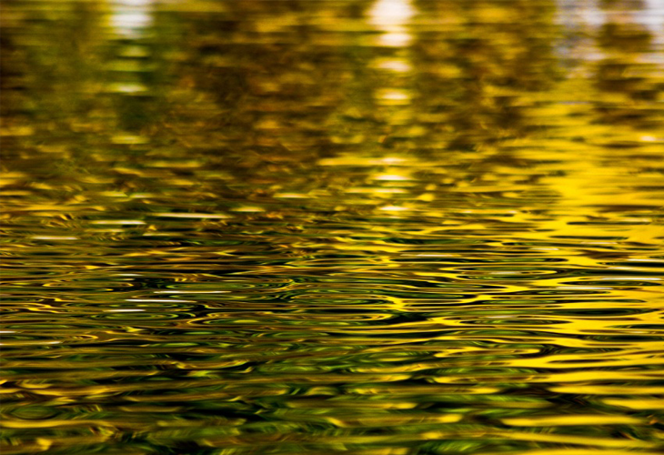 Ripples wallpaper - cssauthor.com