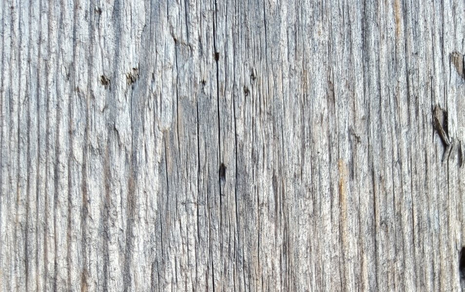 Texture - Wood #3
