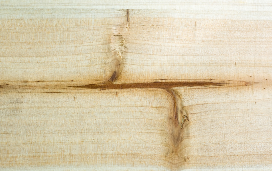 Texture: Wood Panel 2