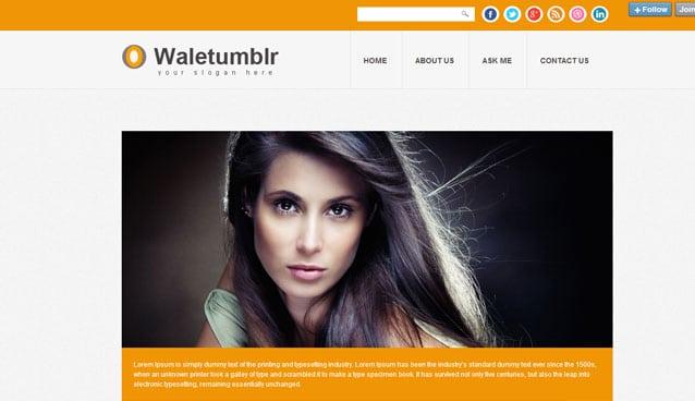 40-Amazing-Premium-Tumblr-Themes-for-Inspiration
