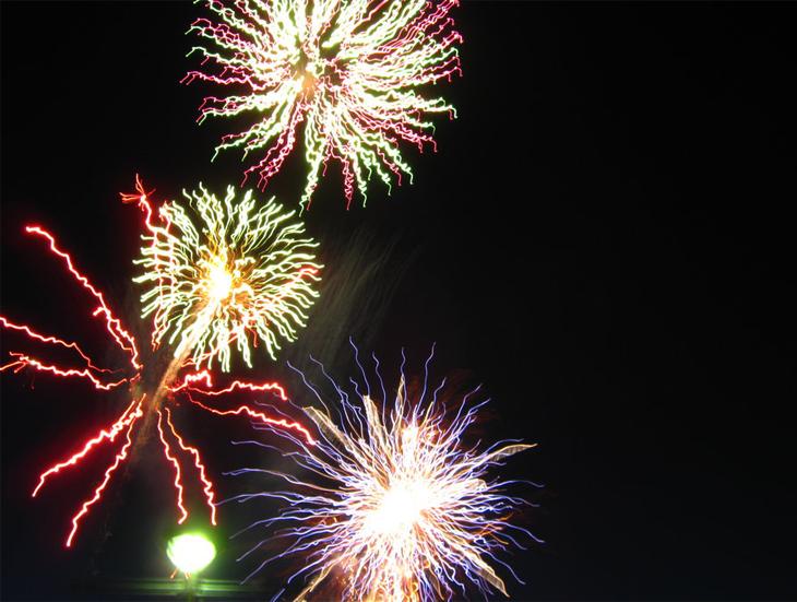 Fire Flowers - Fireworks 15