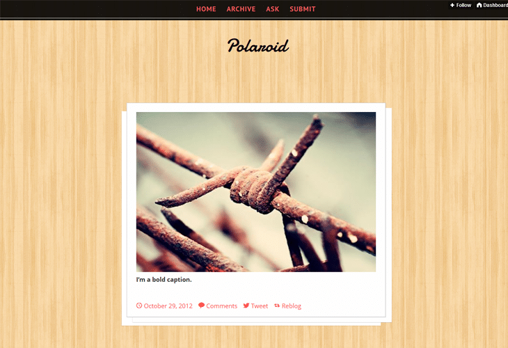 Polaroid Tumblr Theme