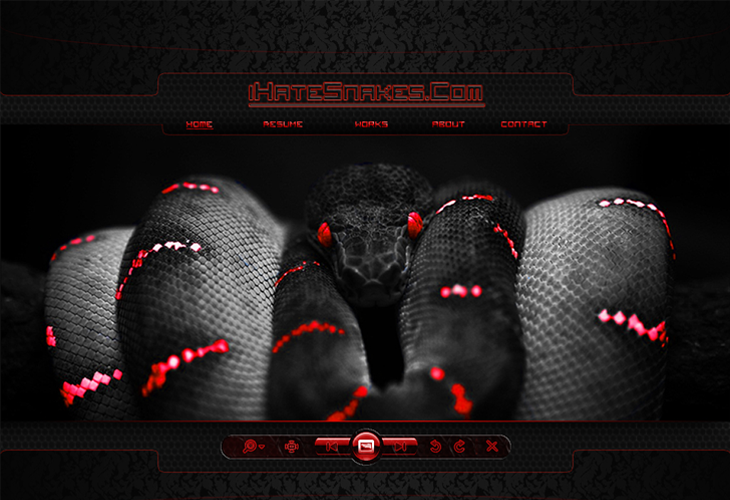 iHateSnakes-design-template