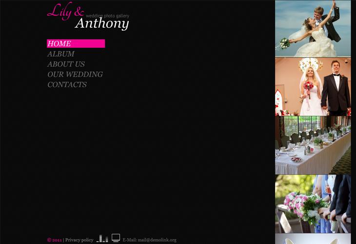Lily & Anthony Wedding Photo Gallery