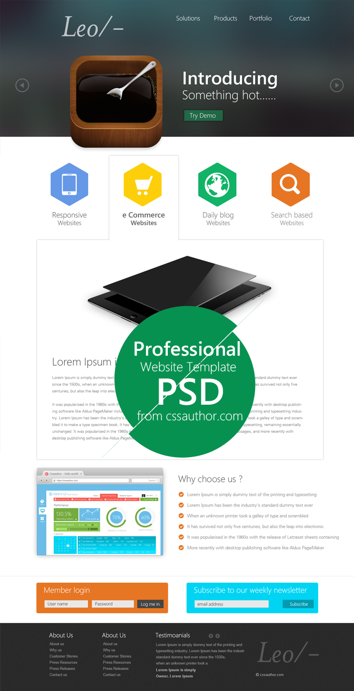 Professional Website Template Design PSD | CSS Author