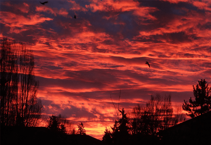 Red Sky at Dawn - Windows 8 Wallpaper