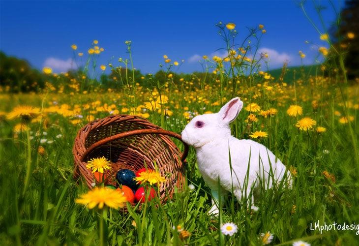 Happy-Easter-Wallpaper