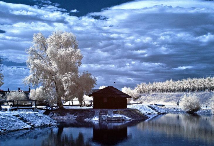 Infrared-Pond