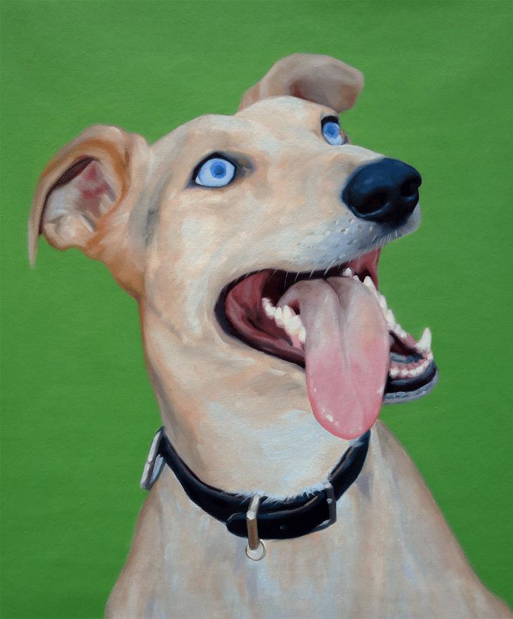 Peter Dog