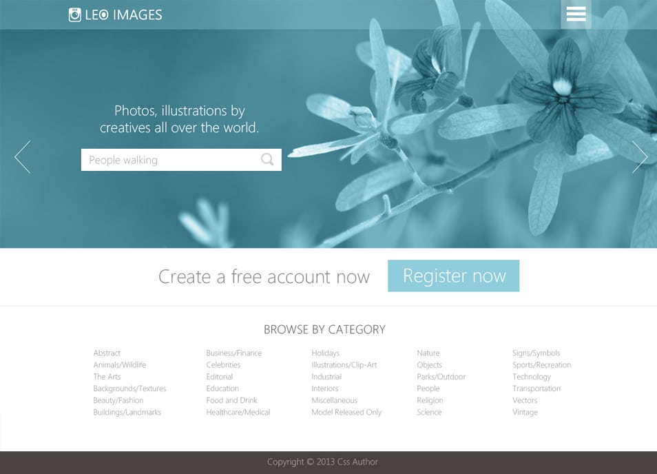 Stock Photos Website Template PSD