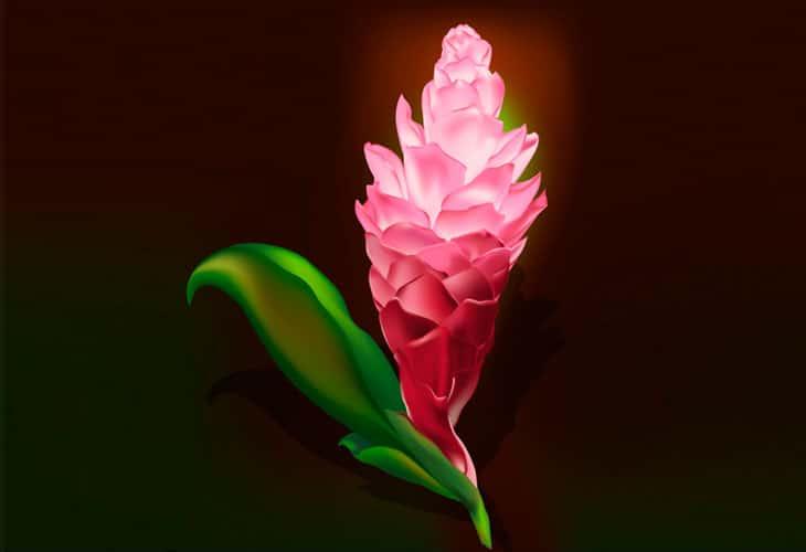 Gradient-Mesh-Flower