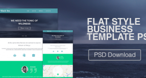 Flat Style Business Web Template PSD – Freebie No: 102
