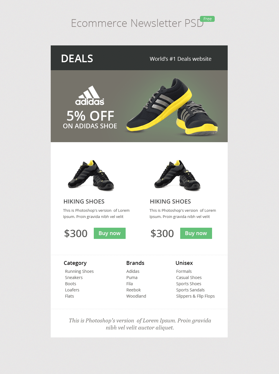 E-commerce Newsletter PSD - cssauthor.com