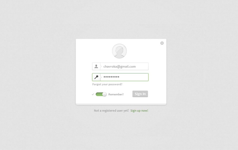 Elegant Login Form Design