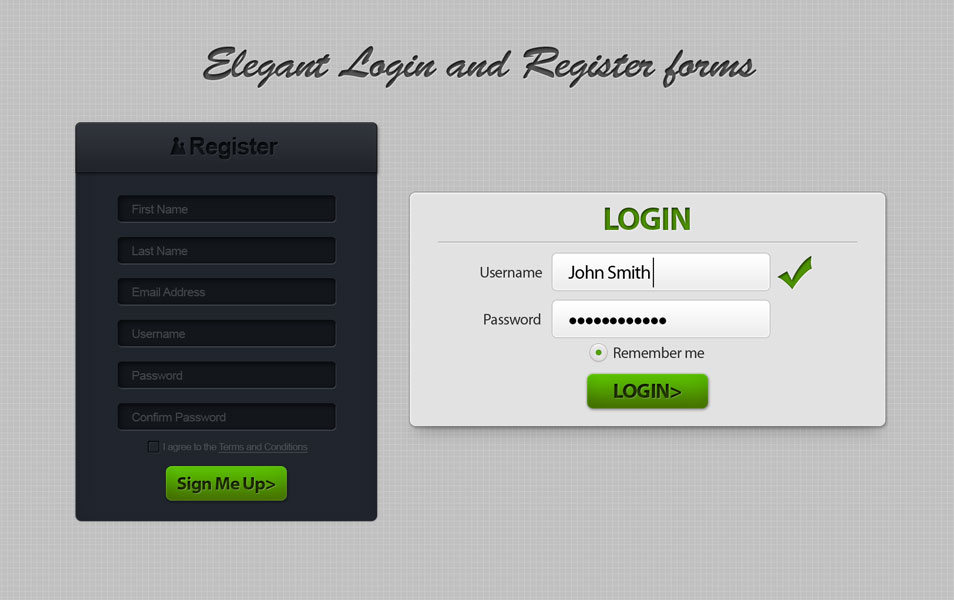 Login and Register Form
