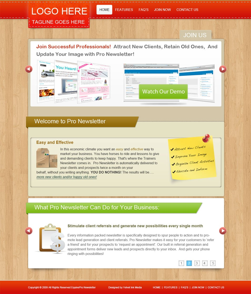 Pro Newsletter: Free PSD Website Template for Online Business