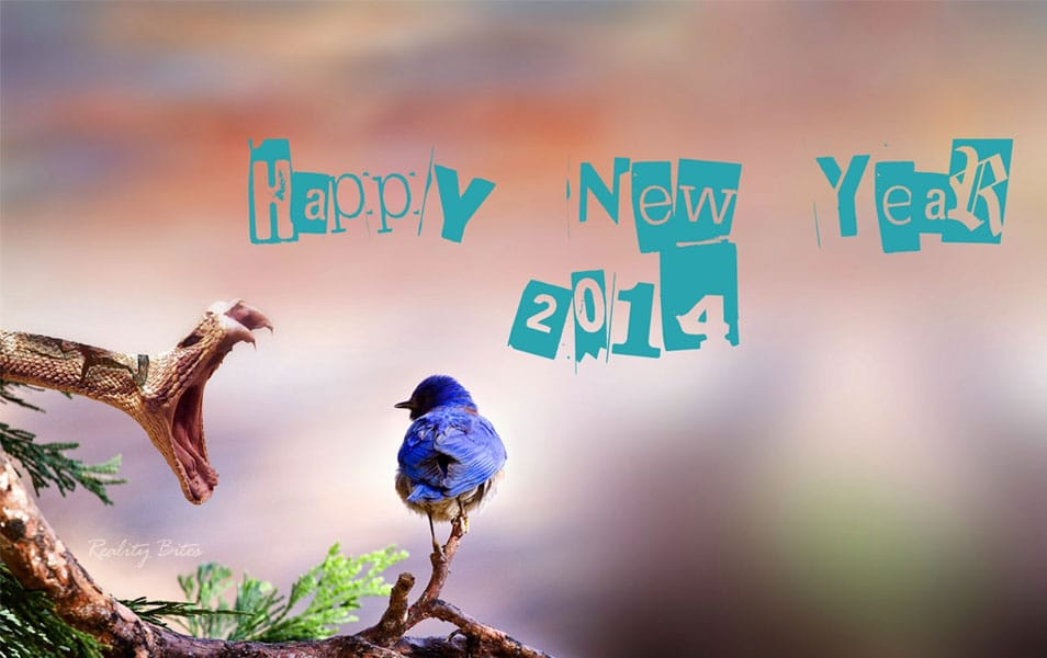 Happy new year wallpaper 2014 hd new year 2014 greetings hd wallpaper voltagebd