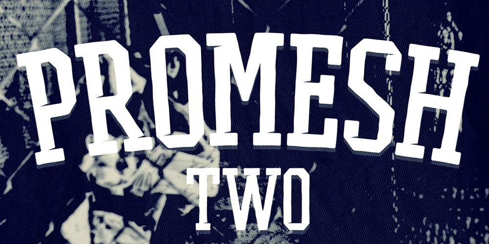 Promesh Two Font