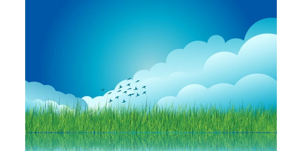 Cloud and Grass Background