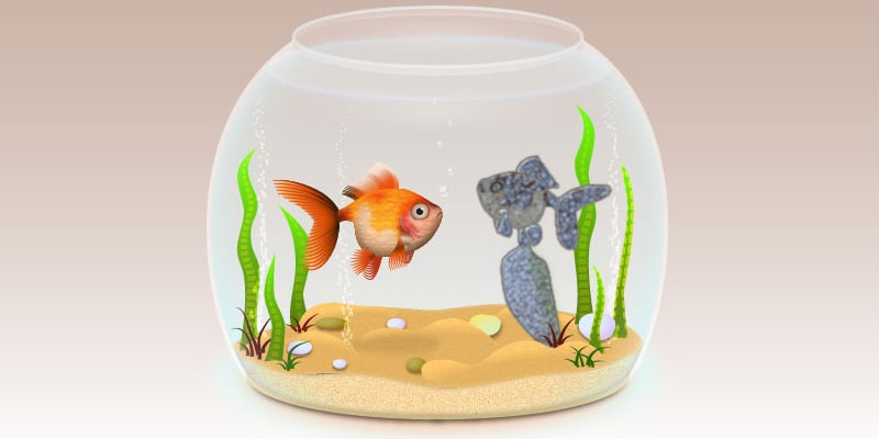 realistic Fishbowl