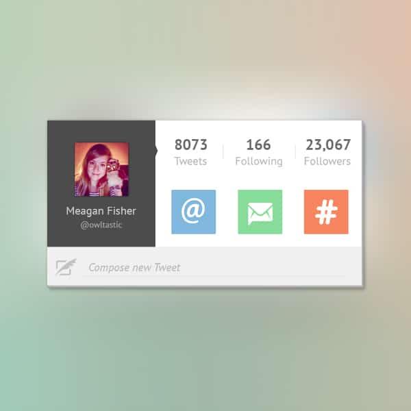 Twitter UI Widget