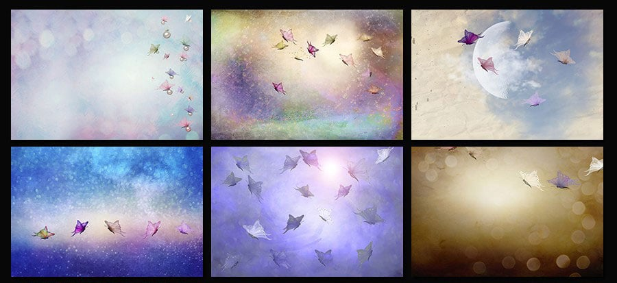 Free-Butterfly-Textures