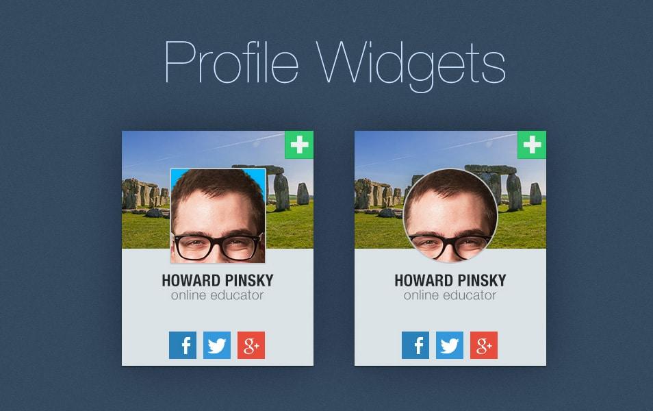 Free-Profile-Widget-PSD