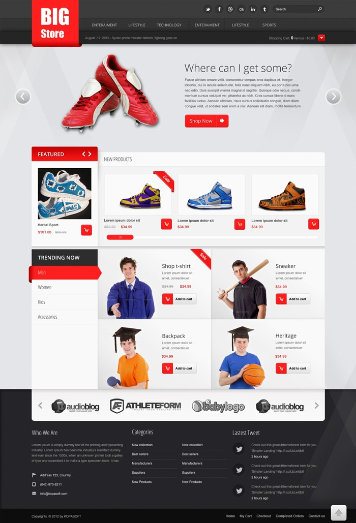 Free ecommerce web templates psd css author for Website templates free download