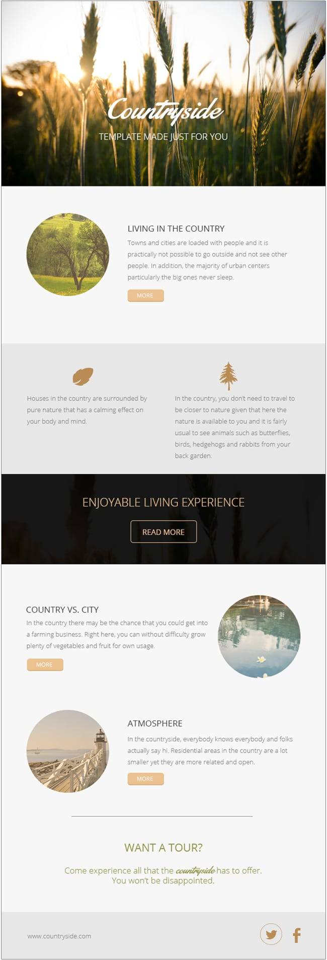 free email newsletter templates psd css author. Black Bedroom Furniture Sets. Home Design Ideas