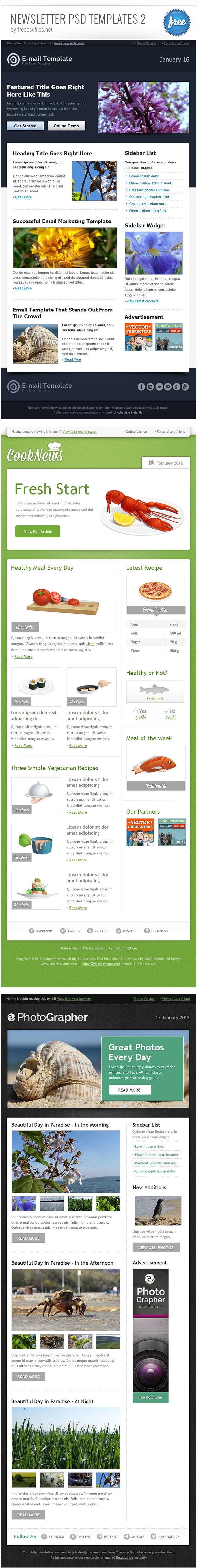 Newsletter PSD Template