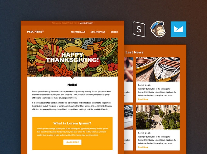 Thanksgiving Email Newsletter Template