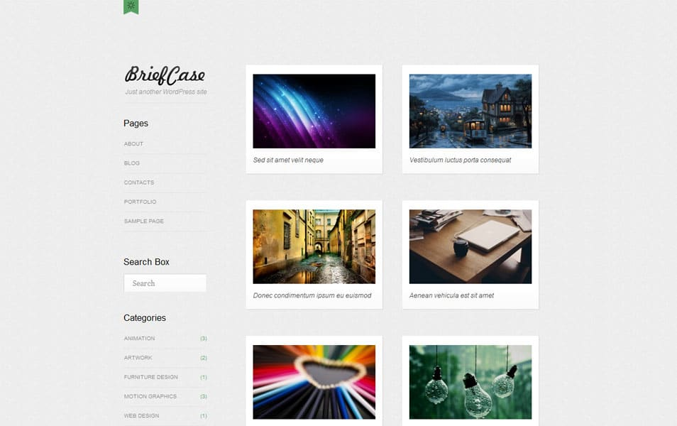Briefcase Free Portfolio WordPress Theme