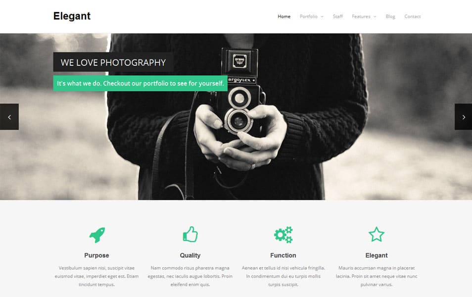 Elegant Free Portfolio WordPress Theme