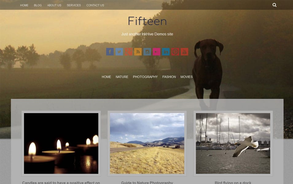 Fifteen Free Photography WordPress Theme