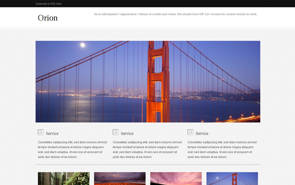 Orion Free Portfolio WordPress Theme