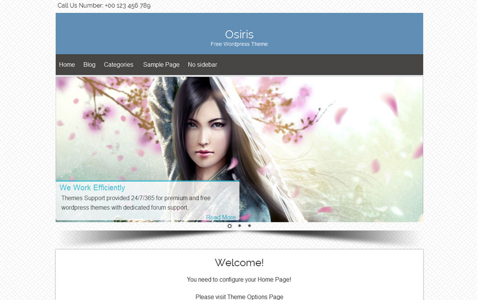 Osiris Free Portfolio WordPress Theme
