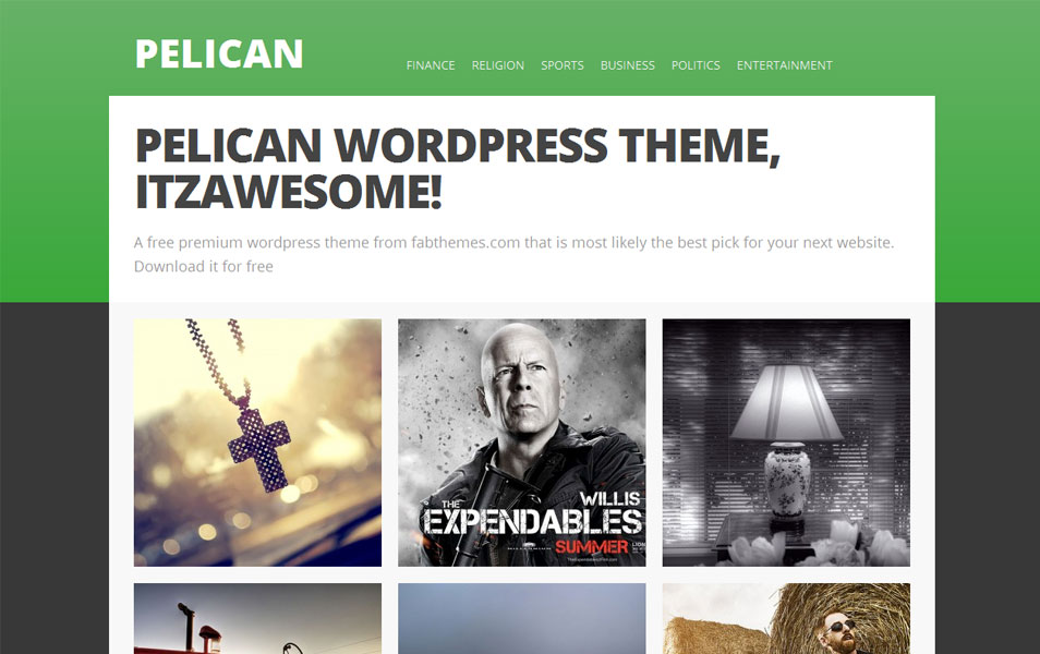 Pelican Free Photography WordPress Theme