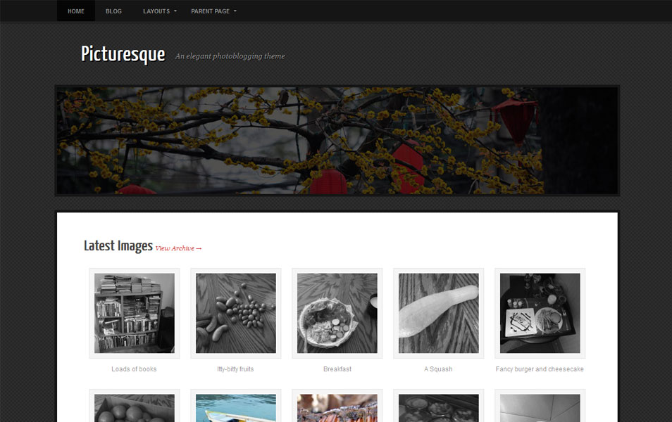 Picturesque Free Photography WordPress Theme