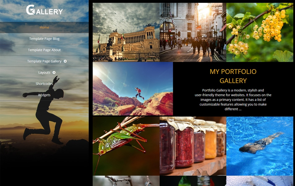 Portfolio Gallery Responsive WordPress Theme