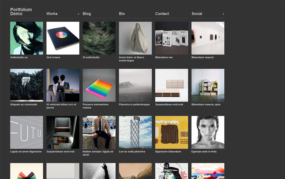 100+ Free Photography WordPress Themes » CSS Author