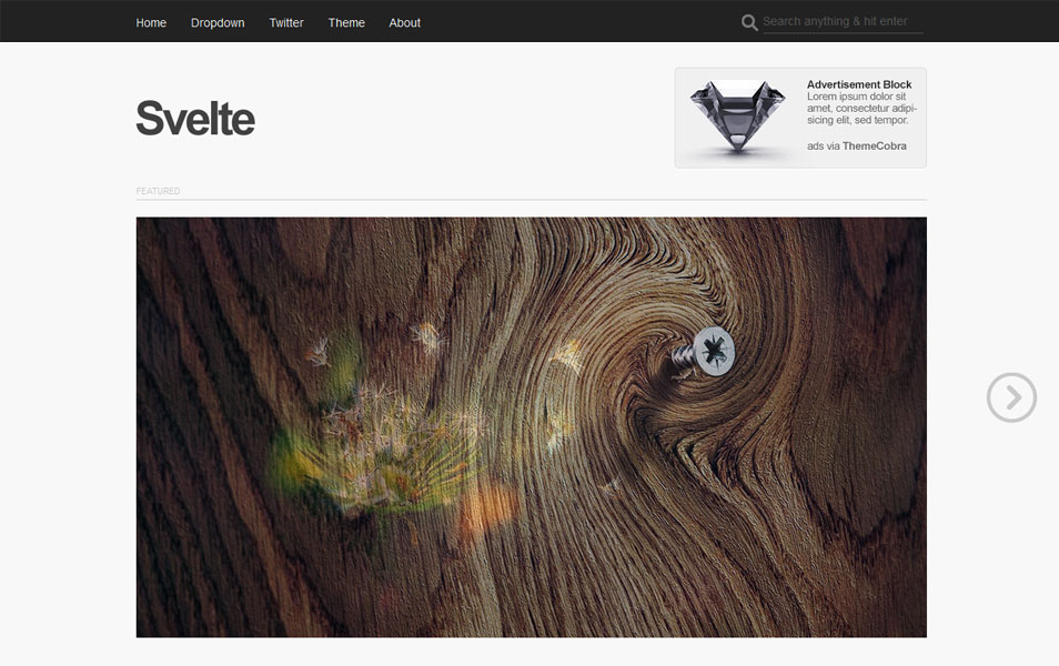 Svelte Free Photography WordPress Theme