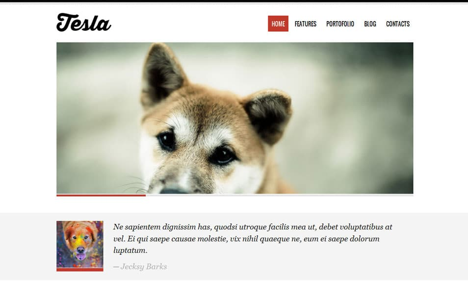 Tesla Free Portfolio WordPress Theme