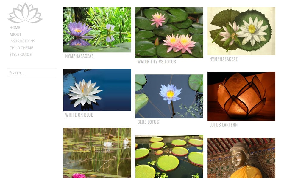 Water Lily Free Photography WordPress Theme