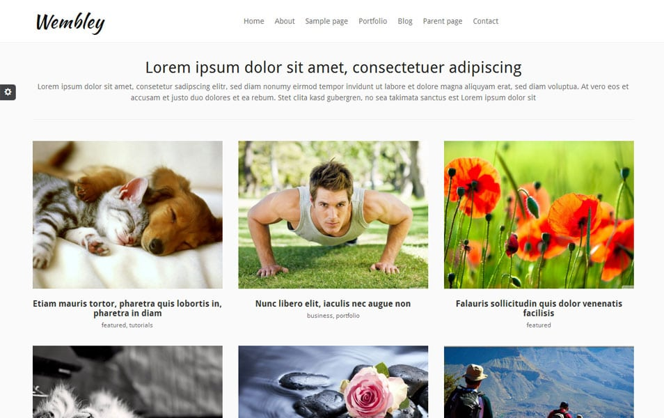 Wembley Free Photography WordPress Theme